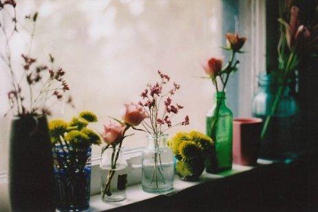 flowers-photography-vintage-Favim_com-351721