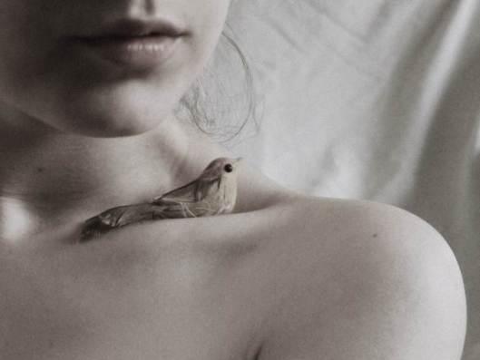 bird_by_masscotie-d6mssh0